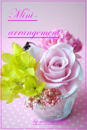 DSC_0117_convert_20110624174627.jpg