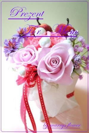 DSC_0942_convert_20110217124231_convert_20110217130720.jpg