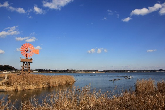 北浦と風車