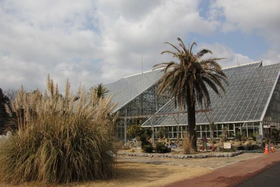 熱帯雨林温室