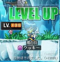 Maple0537.jpg