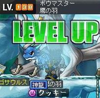 Maple0599.jpg