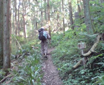 焼山寺への遍路道