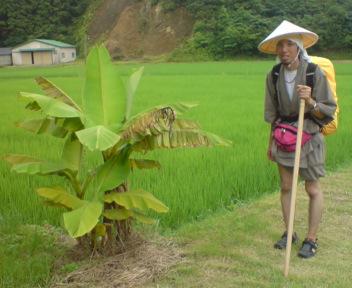 東南アジア的な場所で