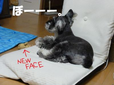 7_18+013_convert_20110718094516.jpg