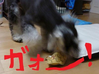 7_18+032_convert_20110718102147.jpg