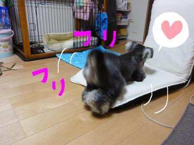 7_18+033_convert_20110718095246.jpg