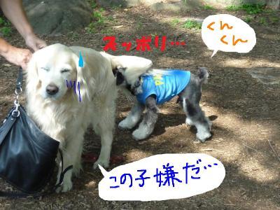 7_18+072_convert_20110720084343.jpg
