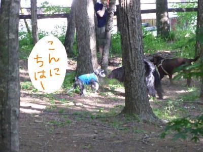 7_18+130_convert_20110720102124.jpg
