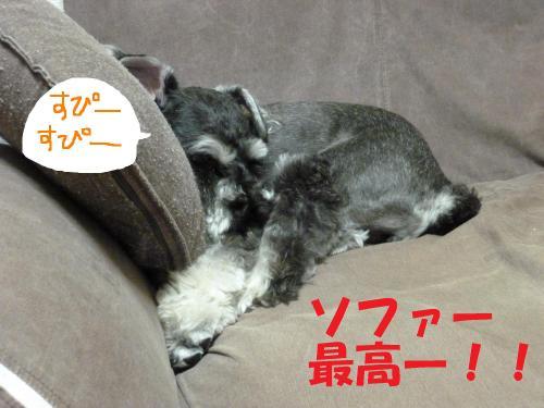 7_21+038_convert_20110725093235.jpg