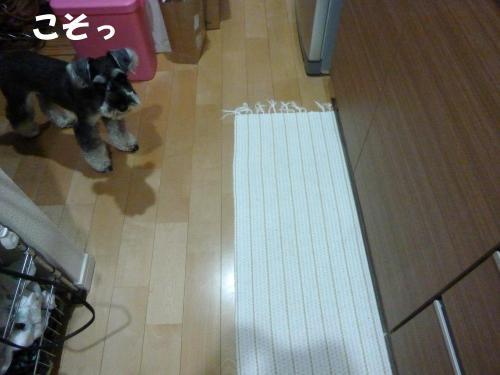 7_29+009_convert_20110729084403.jpg
