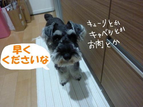 7_29+015_convert_20110729084640.jpg