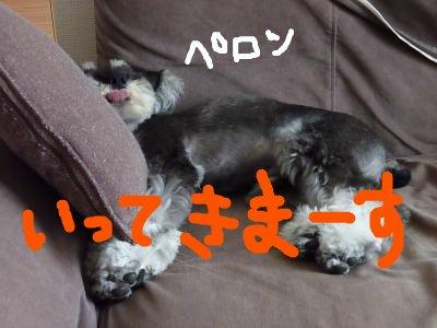 8_12+023_convert_20110812230834.jpg