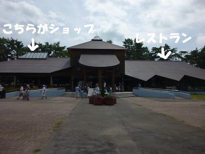 8_17+067_convert_20110818085801.jpg