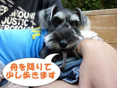 8_17+159_convert_20110819104344.jpg