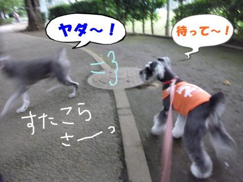 8_2+001+(2)_convert_20110803091137.jpg