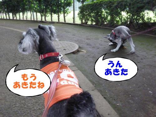 8_2+056_convert_20110803091232.jpg