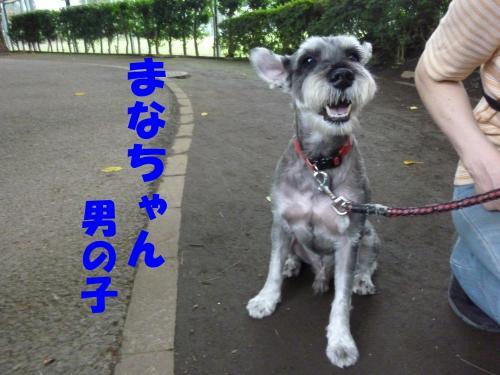 8_2+059_convert_20110803092753.jpg