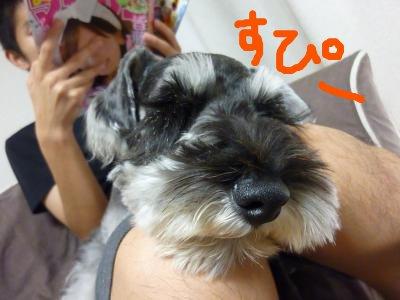 8_21+003_convert_20110824131638.jpg