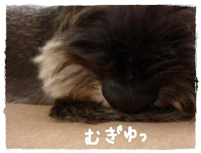 8_26+028_convert_20110826150859.jpg