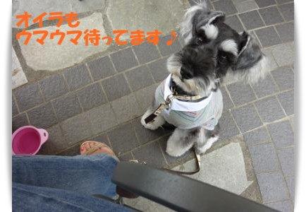 8_28+026_convert_20110828090439.jpg
