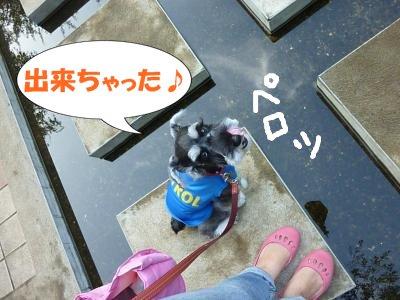 8_31+038_convert_20110831090727.jpg