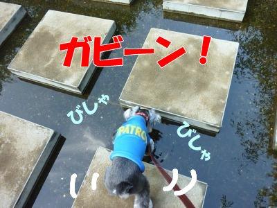 8_31+041_convert_20110831090756.jpg