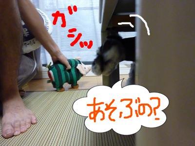 8_9+027_convert_20110809083323.jpg