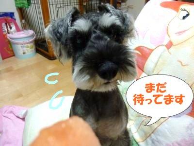 9_2+025_convert_20110902090114.jpg