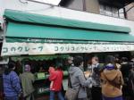 鎌倉旅行16