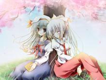 桜もこけねblog