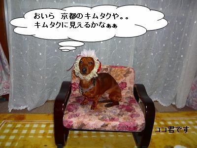 20419りぼん (2)