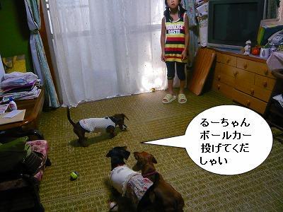 20731るーちゃん (1)