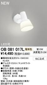 OB081017L.jpg