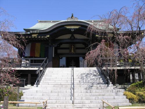 110408shimura10.jpg