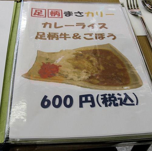 110410ashigara03.jpg