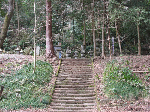 110416sakura03.jpg