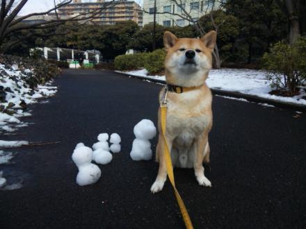 snow-in-tokyo6.jpg
