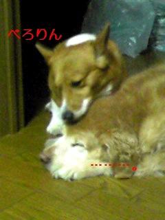 080901_2139~01_Ed