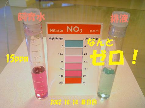 20081014no3.jpg