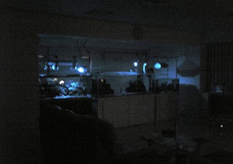 20081112night.jpg