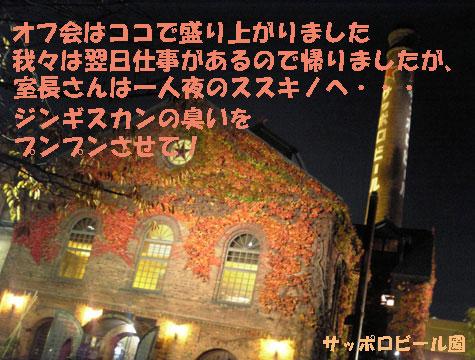 20081117beer1.jpg