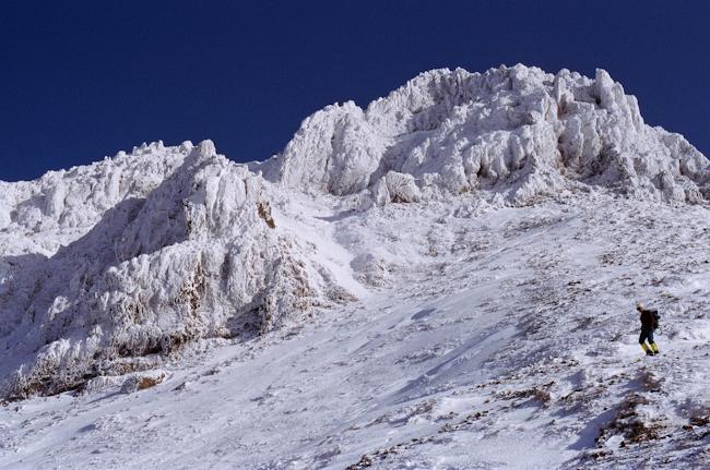 20090124-3.jpg