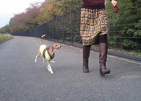 ママと散歩3