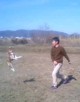 タロ助と遊ぶ9