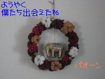 83p83I815B8393.jpg