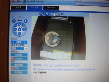 DSC008320055.jpg
