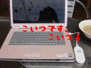 DSC013230055.jpg