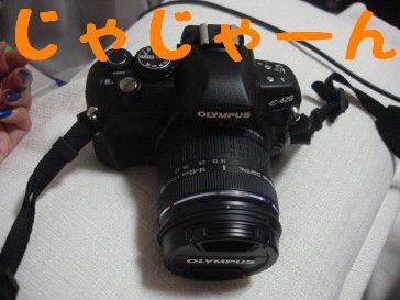 DSC016000055.jpg
