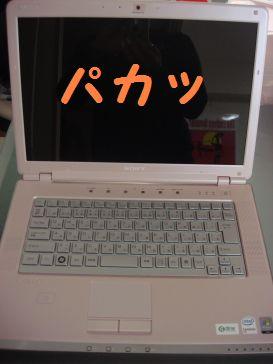 DSC03306.jpg